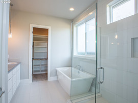 MasterBathroom_glass_shower_freestanding