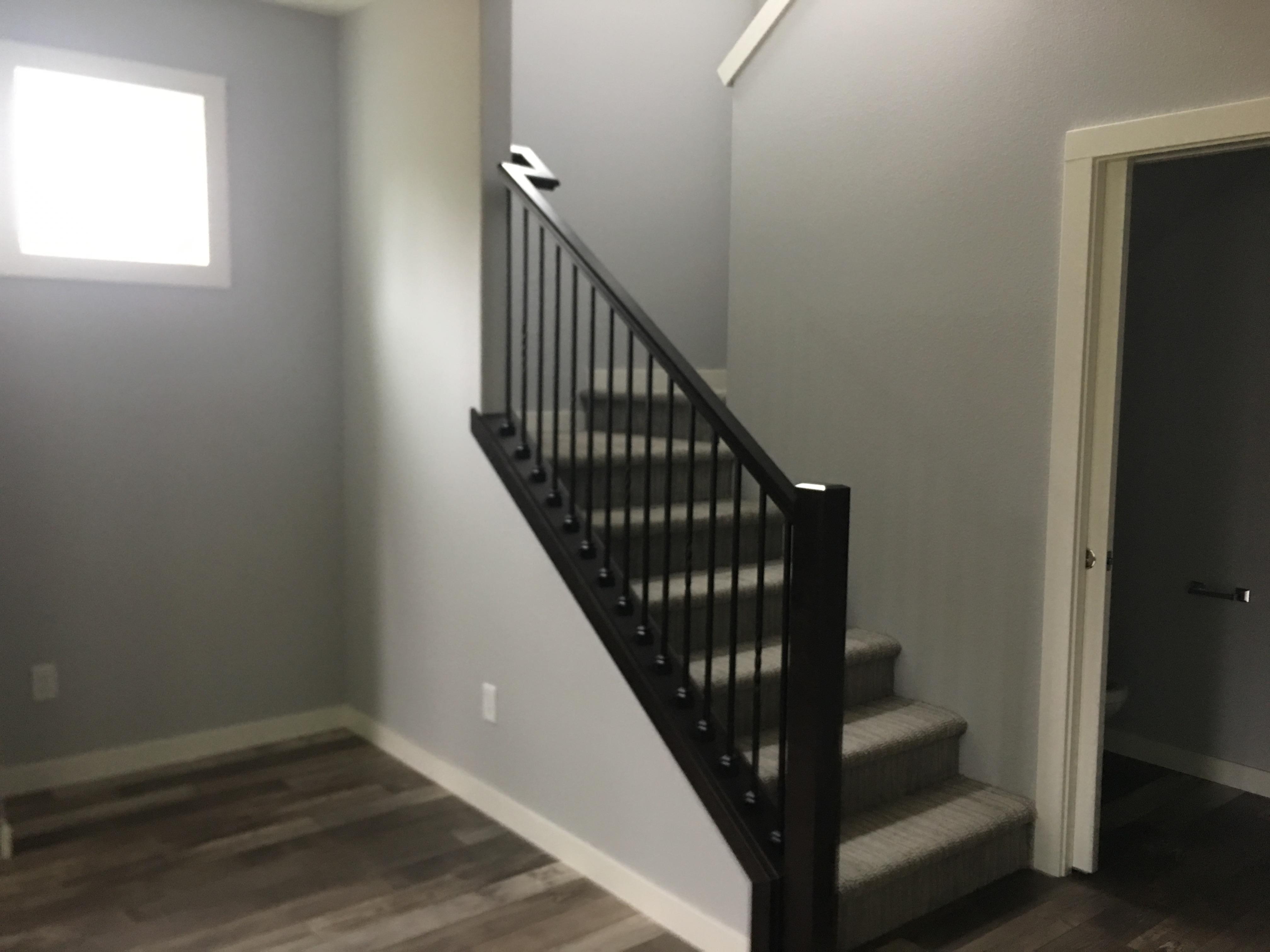 Alder/Iron Handrail
