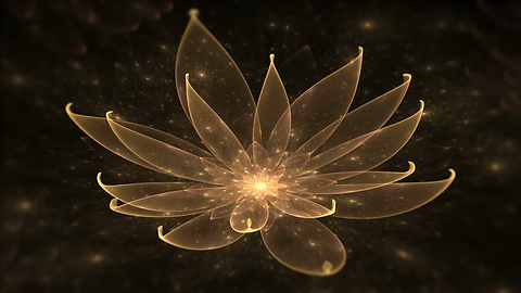 golden-lotus-water-lily-enlightenment-or