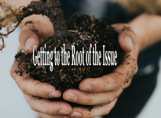 Getting to the Root of the Issue