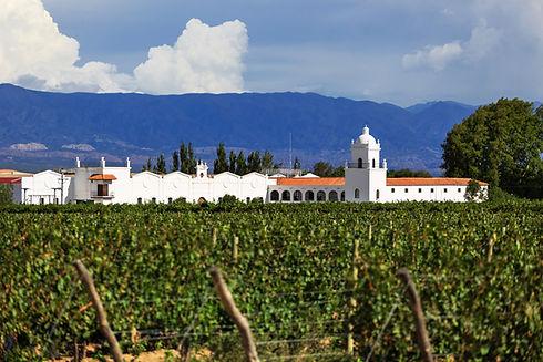 cafayate-wine-region.jpeg