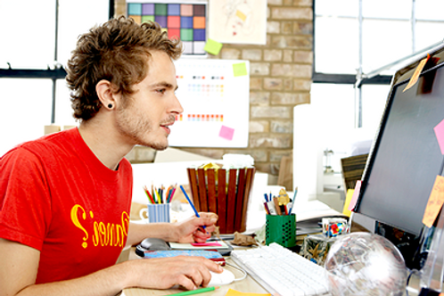 Web Designer/ Developer
