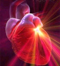 Anjali Mudra & the Spiritual Heart