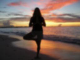 Yoga Yoga Therapy Yoga Teacher Training