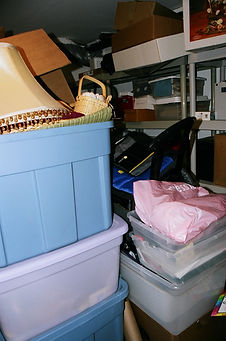 Professional Organizing Clear the Clutter Storage Organizing