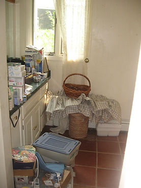Professional Organizing Clear the Clutter Bathroom Organizing