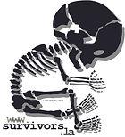 Fetal-Logo-alt2.jpg