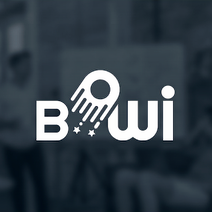 Ievadseminārs: BOWI projekts