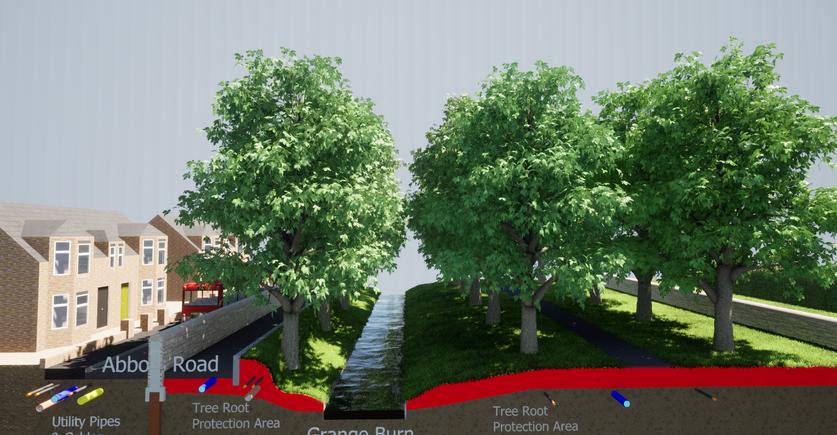Abbots Road/ Zetland Park Alternative Defences to Retain Trees