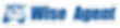 WiseAgent-sign-logo1000_v1.png