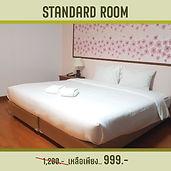 Save September - Room-01.jpg