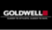 Goldwell - Copy.png
