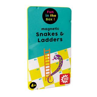Magnetic Snake & Ladders
