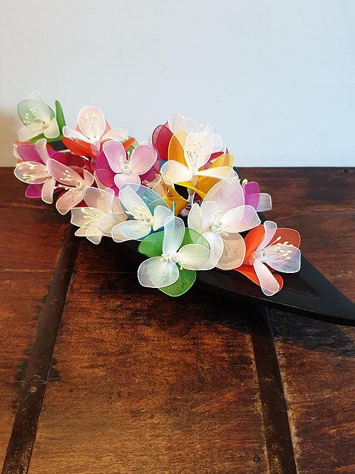 Orchidées multicolors