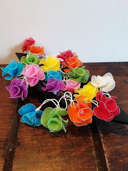 Roses multicolors