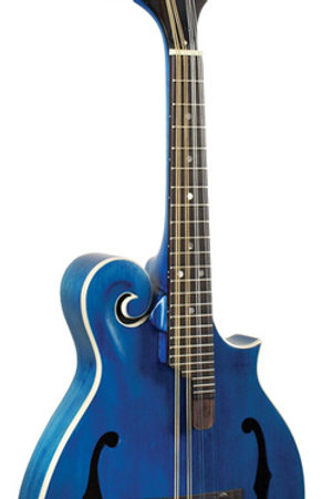 Morgan Monroe American Roots Blue F Style Mandolin