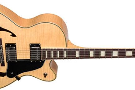 Teton Single Cutaway Full Hollow Body Electric Guitar with Case F1433FM
