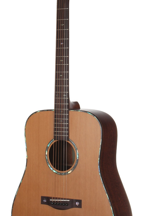 Teton STS205NT Acoustic Dreadnought Guitar