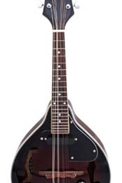 Stadium Electric Mandolin #M-5