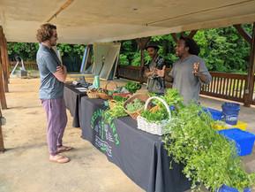 June Happenings at the Urban Farm