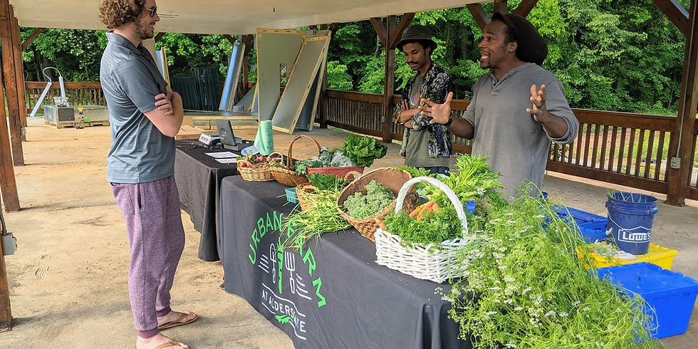 Farm Stand + Cooking Demo