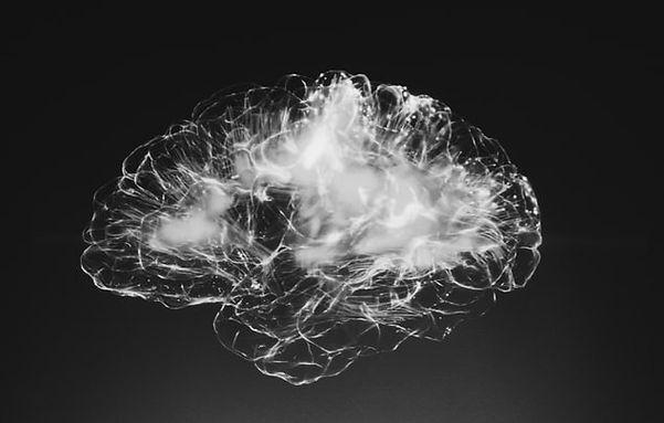 brain%20imaging%20111_edited.jpg