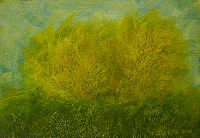 Wind In Trees And Grass No 01