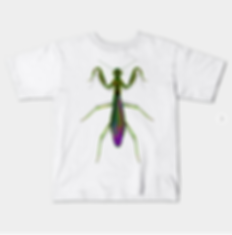 A kids sized green praying mantis graphic tshirt.