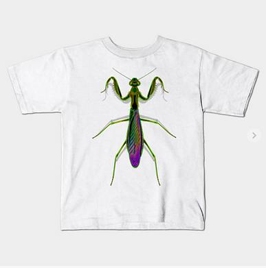 A kids sized green praying mantis graphic tshirt.