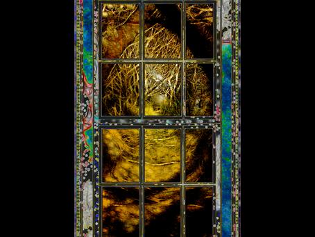 Window Worlds
