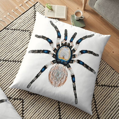 A comfy spider pillow to put your feet up on.