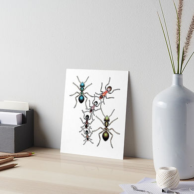 A collection of ants for decorative purposes.