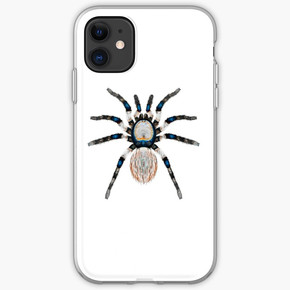 Desert Spider Hues iPhone Case & Cover