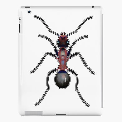 An ant to help the day go by. Graphic design for tech accessories.