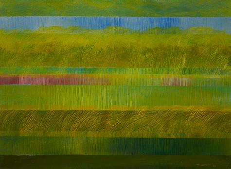 Wind Through The Fields Of Grass