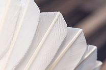 Birdie Closeup
