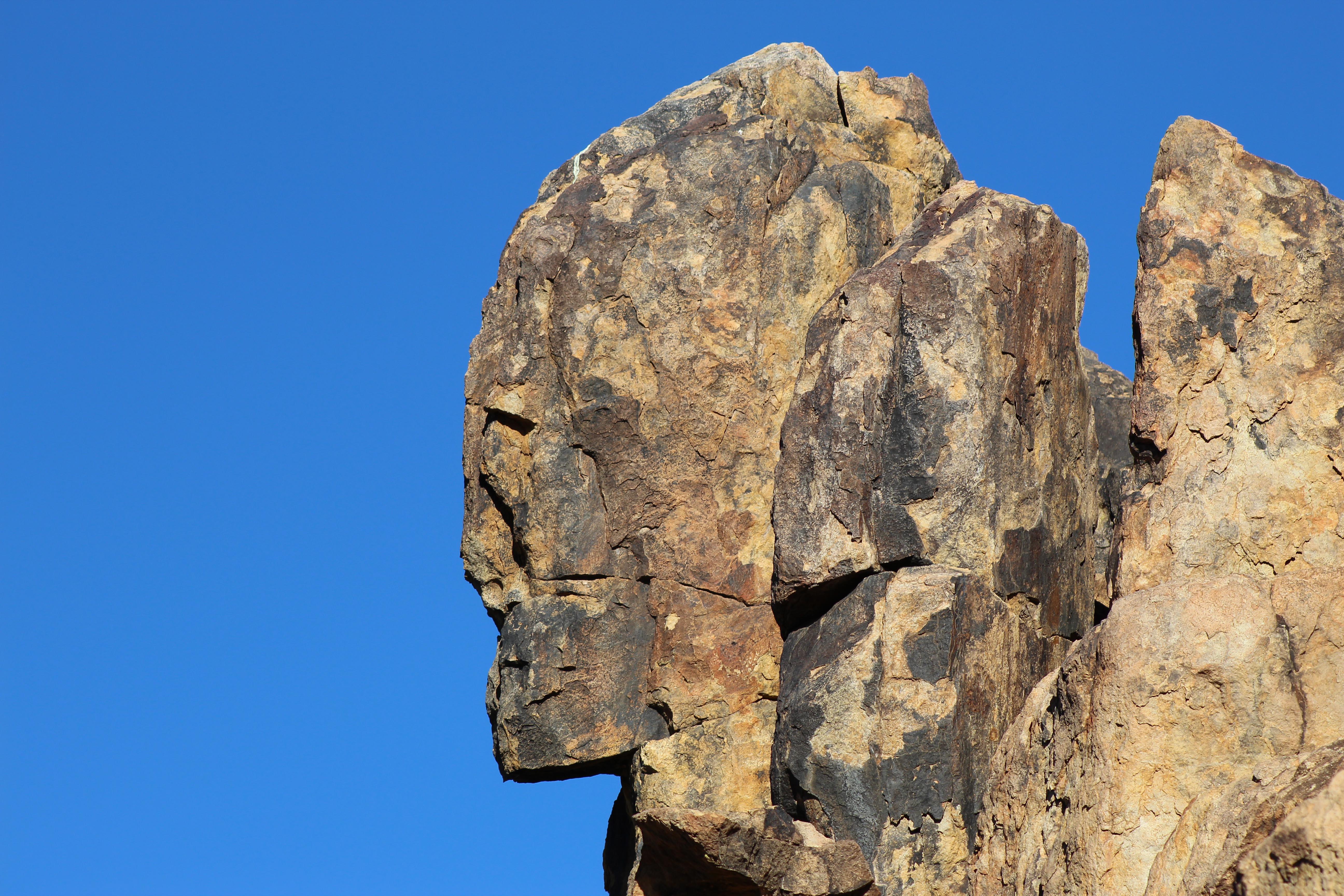 Stone Gaurdian