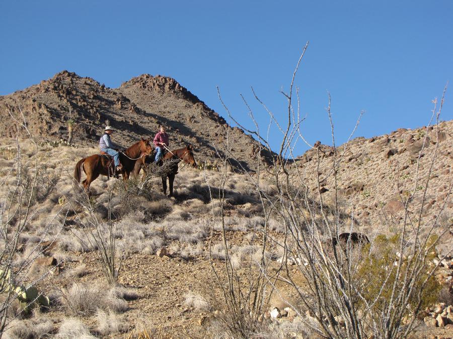 LHR-Horse-Ride.jpg
