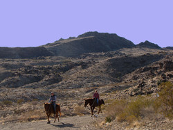 LHR-Horse-Ride-2.jpg