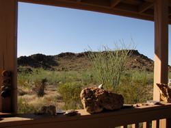 Back Porch Ocotilla View