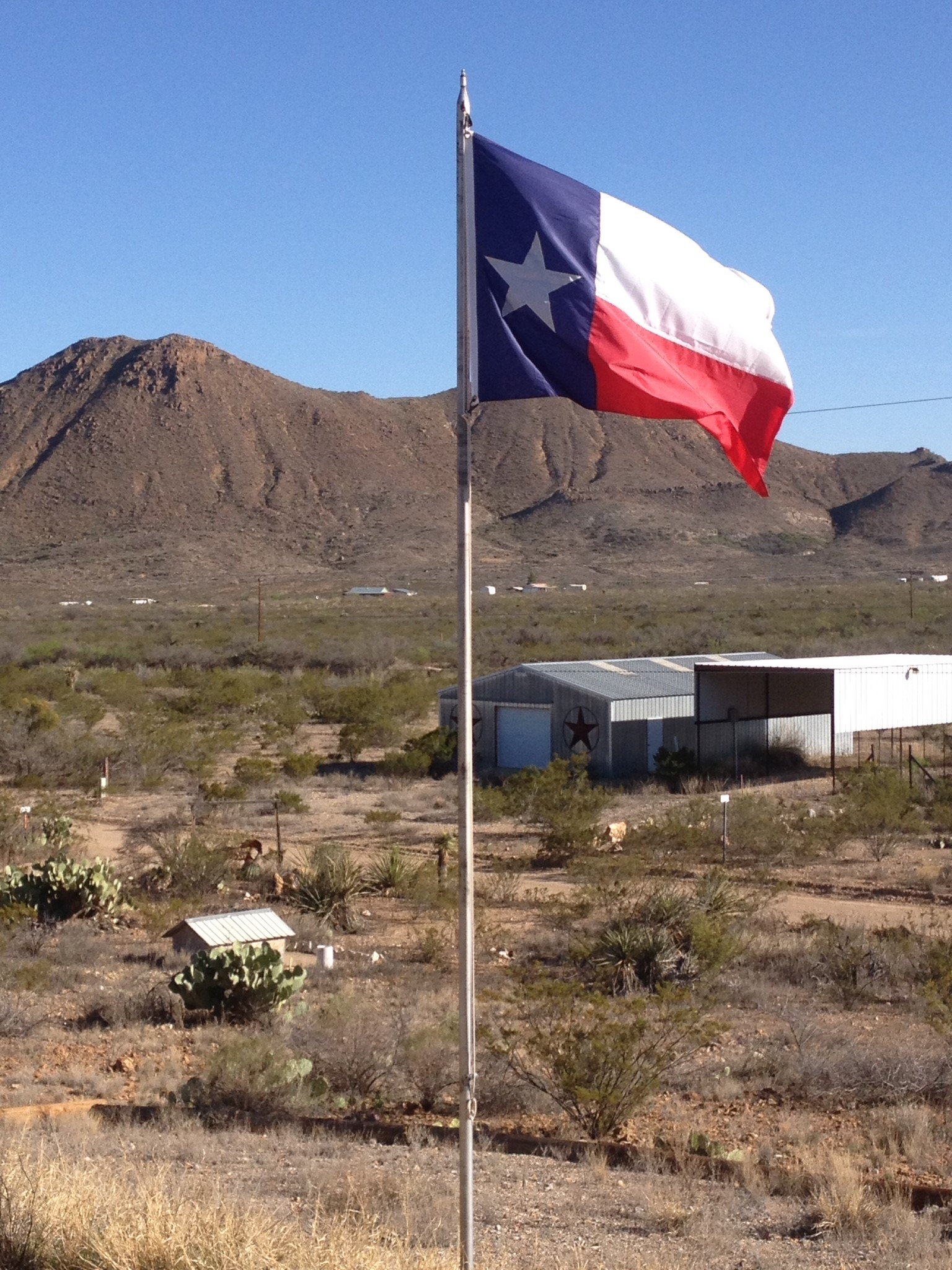 Texas Flag and view
