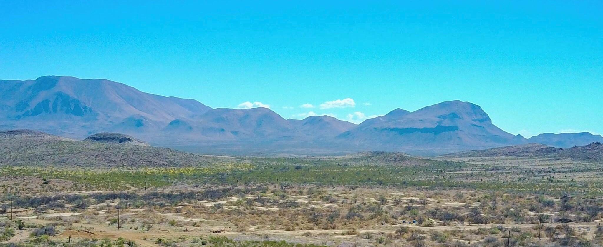 Timeless Ranch Mtn Views