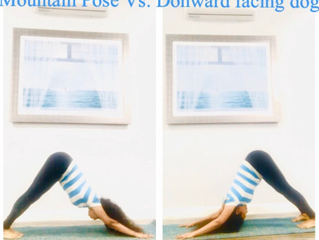 Mountain Pose vs. Downward facing dog Pose