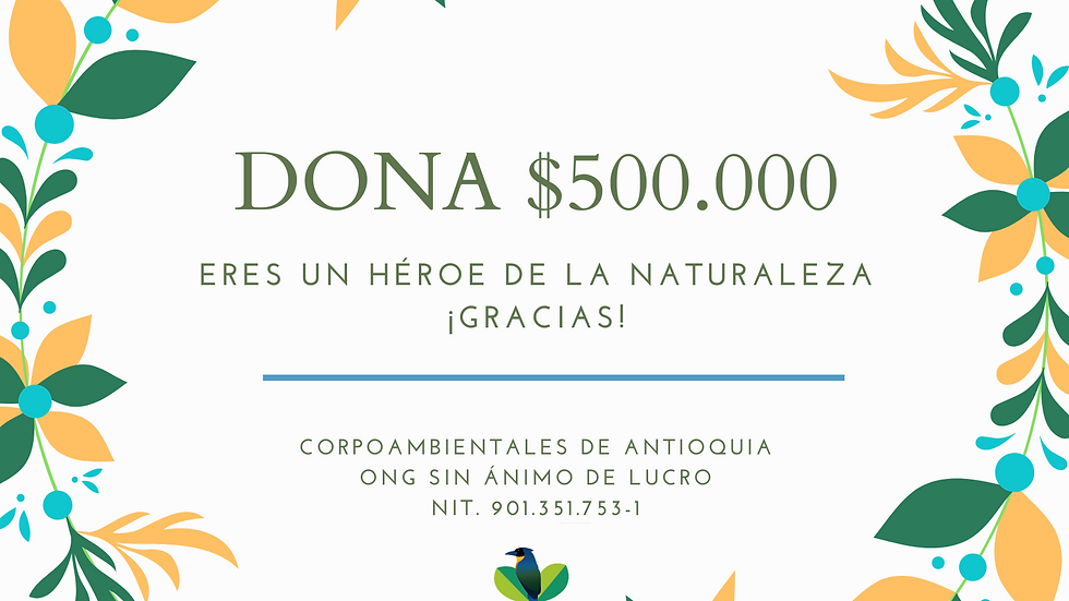 Dona $500.000