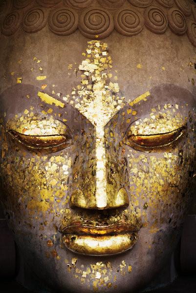 BUDDHA+1