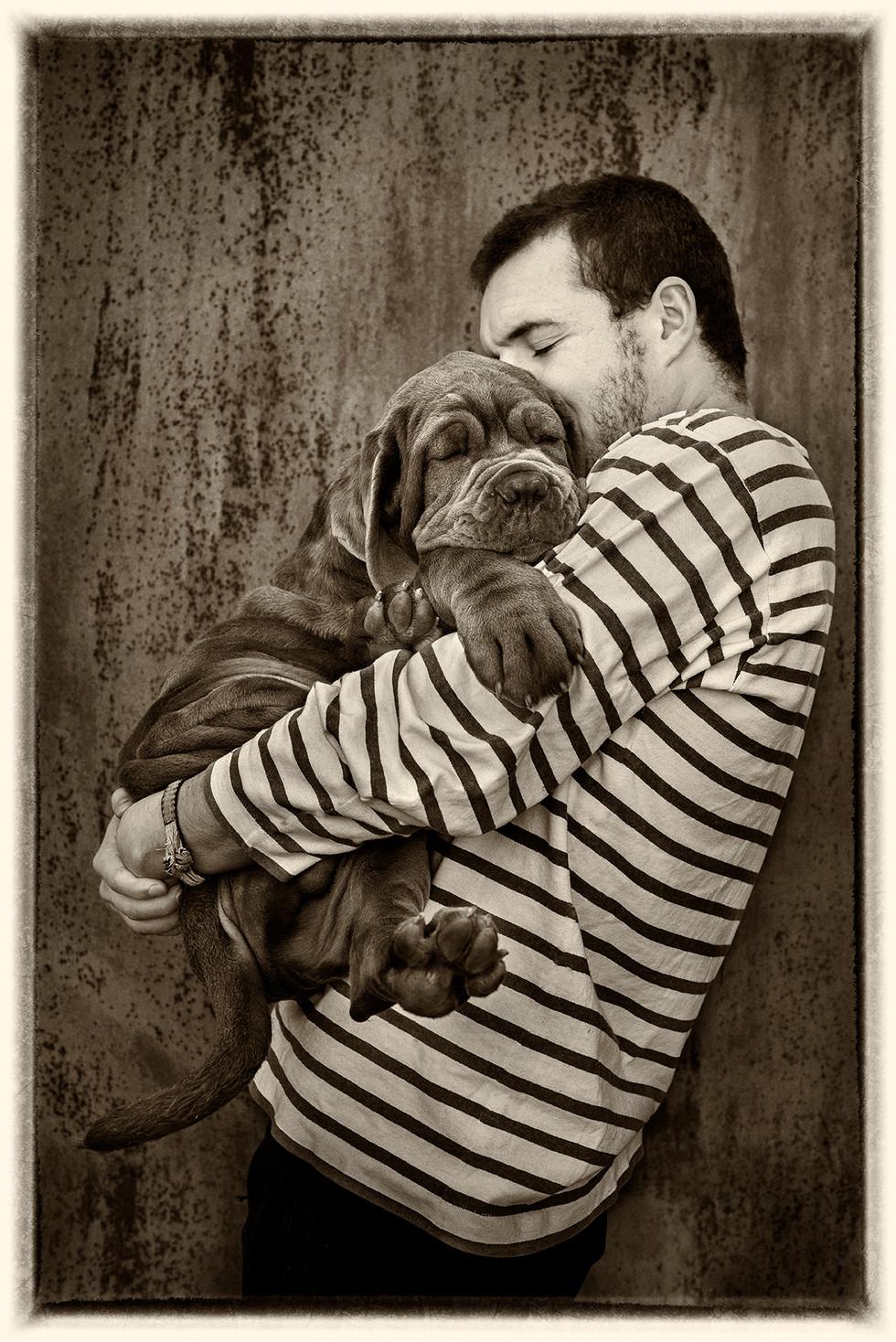 Mastiff_06.jpg