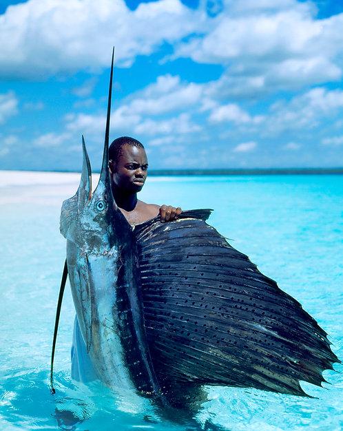 Zanzibar Fisherman Sailfish