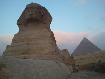 Dans le regard du Sphinx
