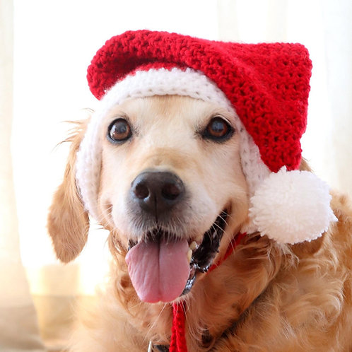 Santa Hat for Large Dogs