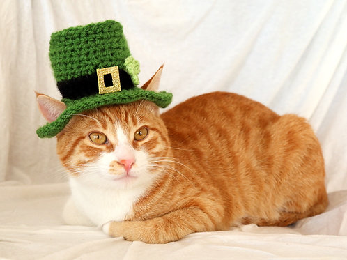 Leprechaun Hat for Cats